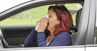 Driving with the enemy: Tips for battling spring pollen
